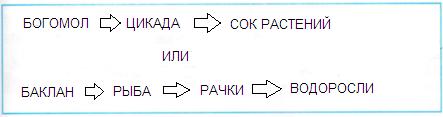 Схема цепи питания для черноморского побережья кавказа фото 271